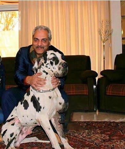 سگ غول پیکر درخانه لاکچری مهران مدیری