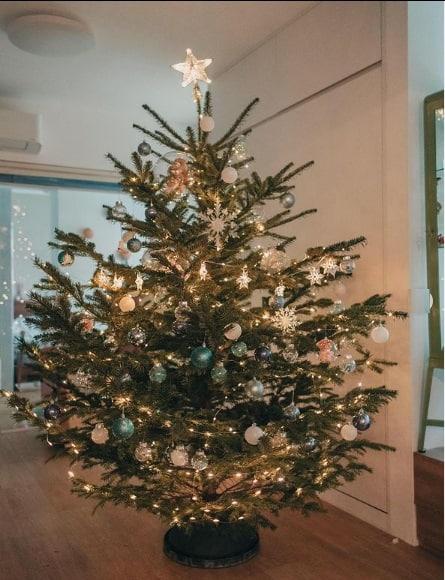 دکور و تزیین درخت کریسمس